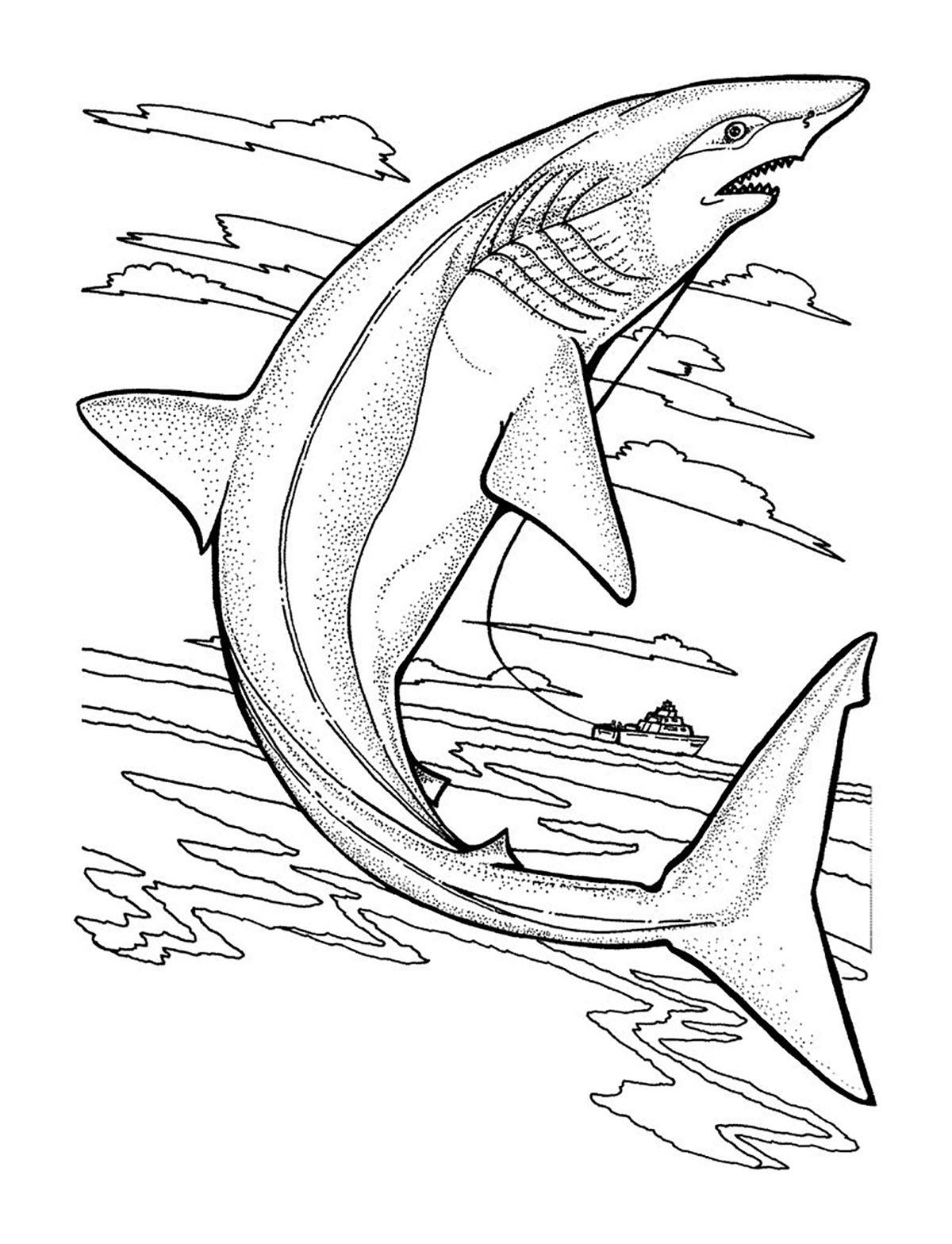 Requin - Coloriages À Imprimer Gratuits : Personnages encequiconcerne Coloriage Requin Blanc Imprimer