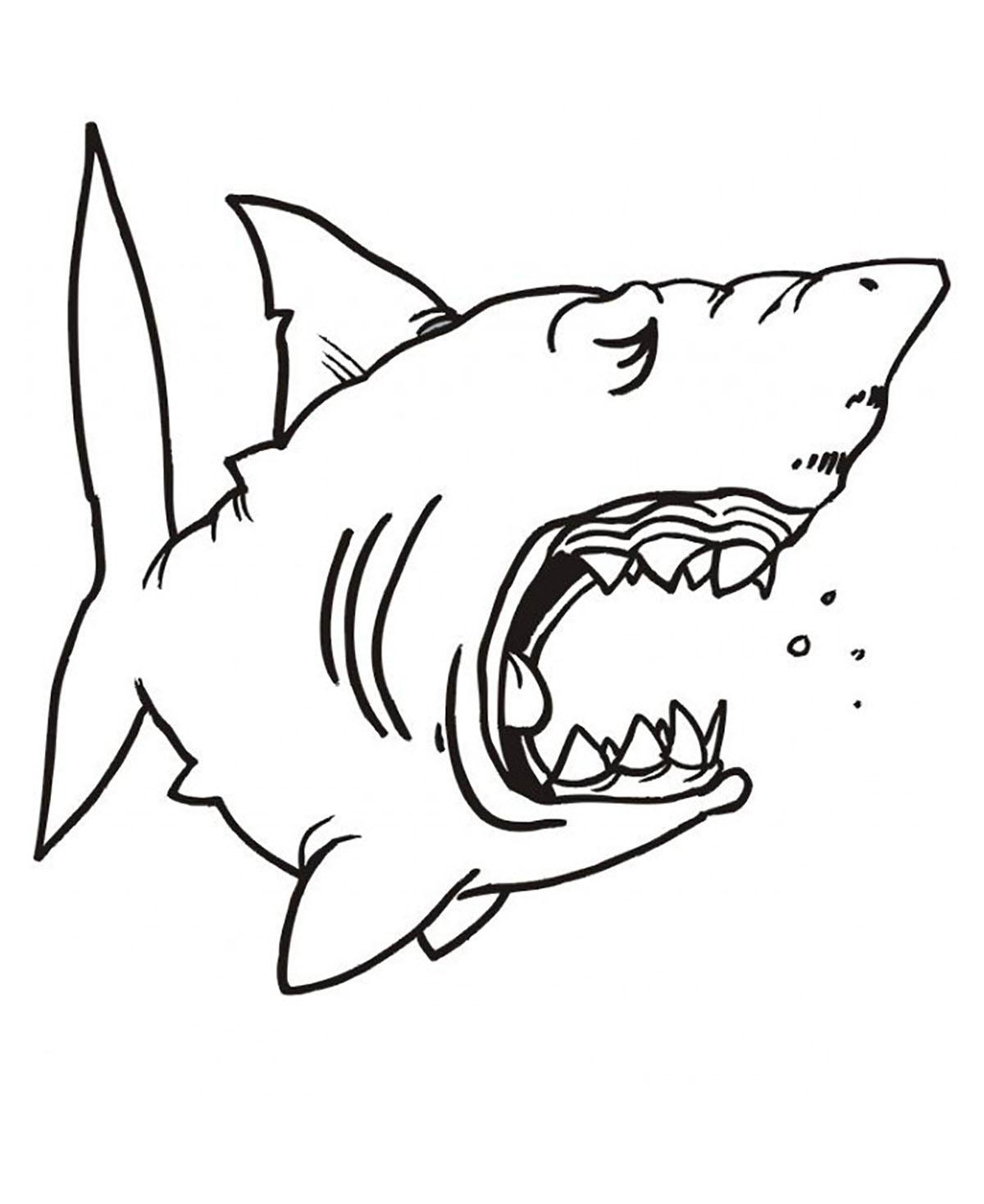 Requin Endormie - Coloriage De Requins - Coloriages Pour Enfants dedans Dessin De Requin À Imprimer
