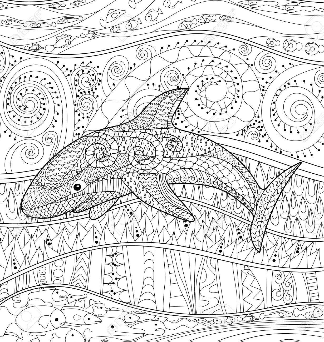 Requin Heureux Avec Des Détails Élevés. Adulte Coloriages Antistress.  Animaux Océanique Blanc Noir Pour L'art-Thérapie. Abstract Pattern Avec Des destiné Coloriage Requin Blanc Imprimer