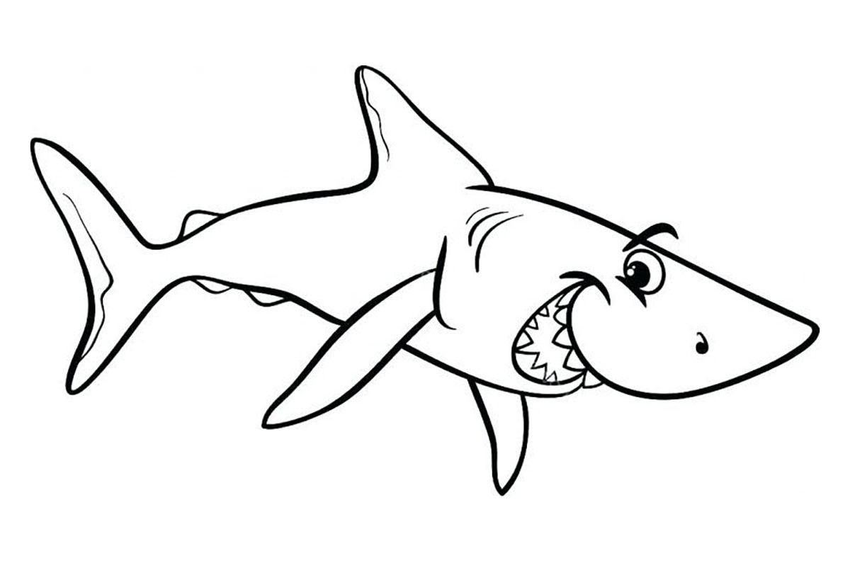 Requin Malicieux - Coloriage De Requins - Coloriages Pour serapportantà Dessin De Requin À Imprimer
