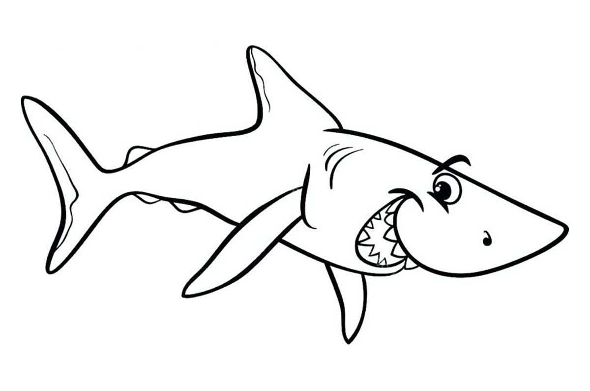Requin Malicieux - Coloriage De Requins - Coloriages Pour tout Coloriage Requin À Imprimer