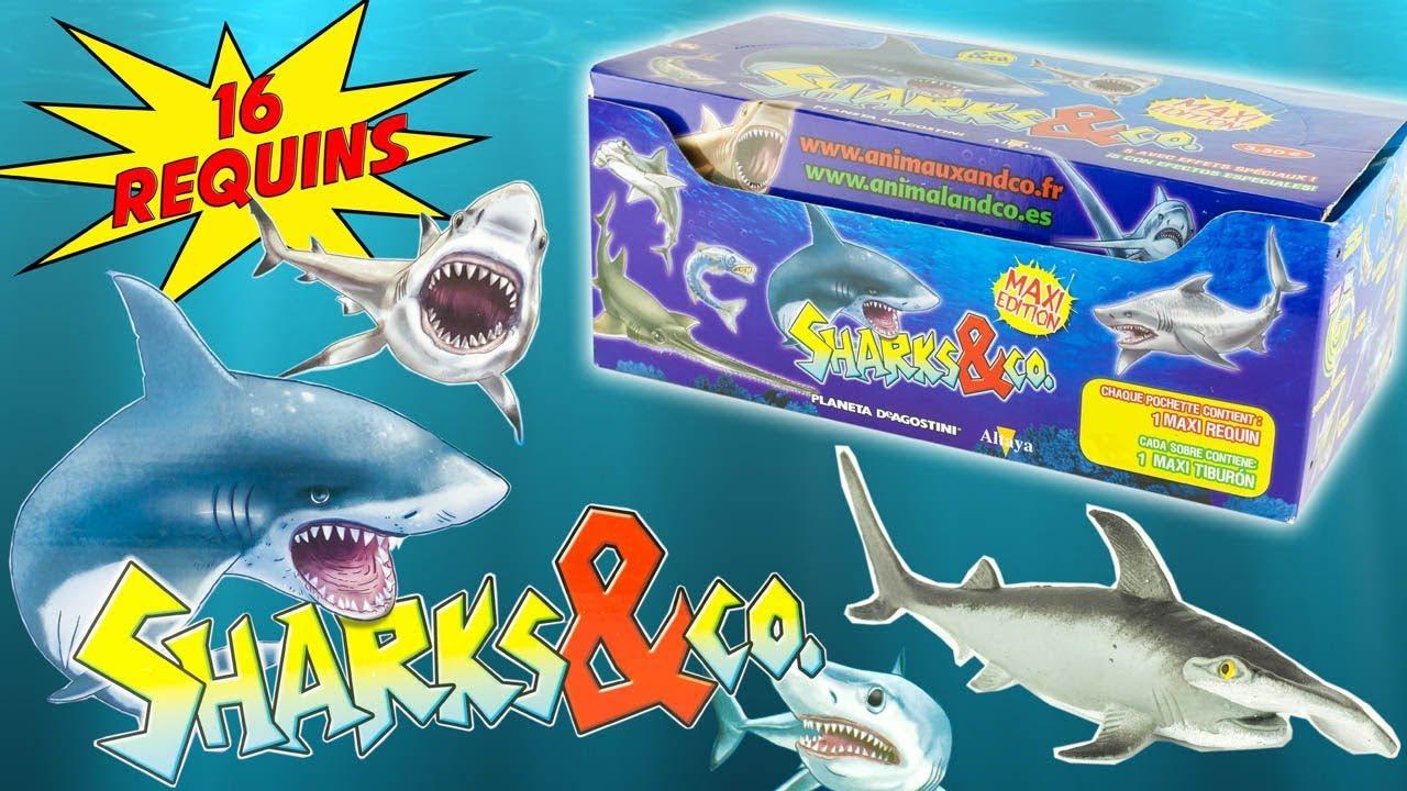 Sharks & Co Complete Collection 16 Sharks Blind Bags Surprise Altaya Toy  Review Juguetes Tiburon destiné Requin Jeux Video