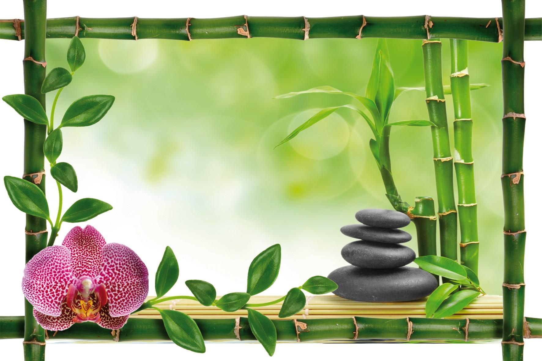 Sticker Bambou Déco Zen - Art Déco Stickers destiné Image Zen A Imprimer