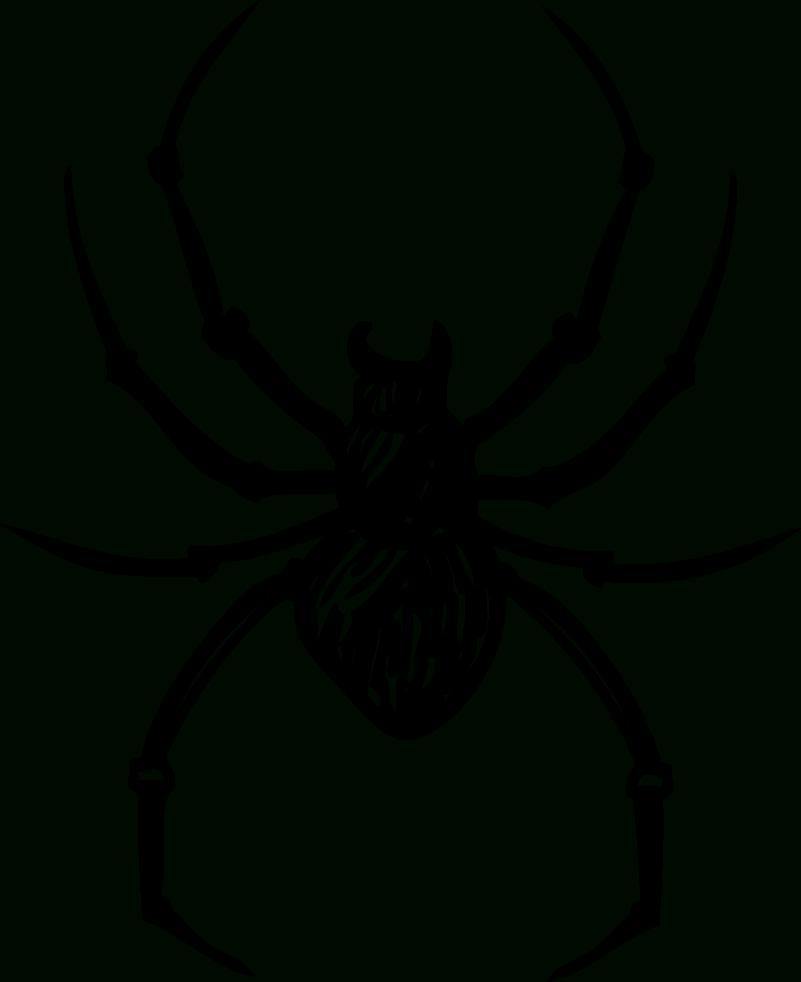 Sticker Maison Dessin Araignée - Tenstickers pour Dessiner Une Araignee