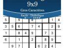 Sudoku Irregulier 9X9 Gros Caracteres - Facile A Diabolique - Volume 6 -  276 Grilles à Jeu Le Sudoku