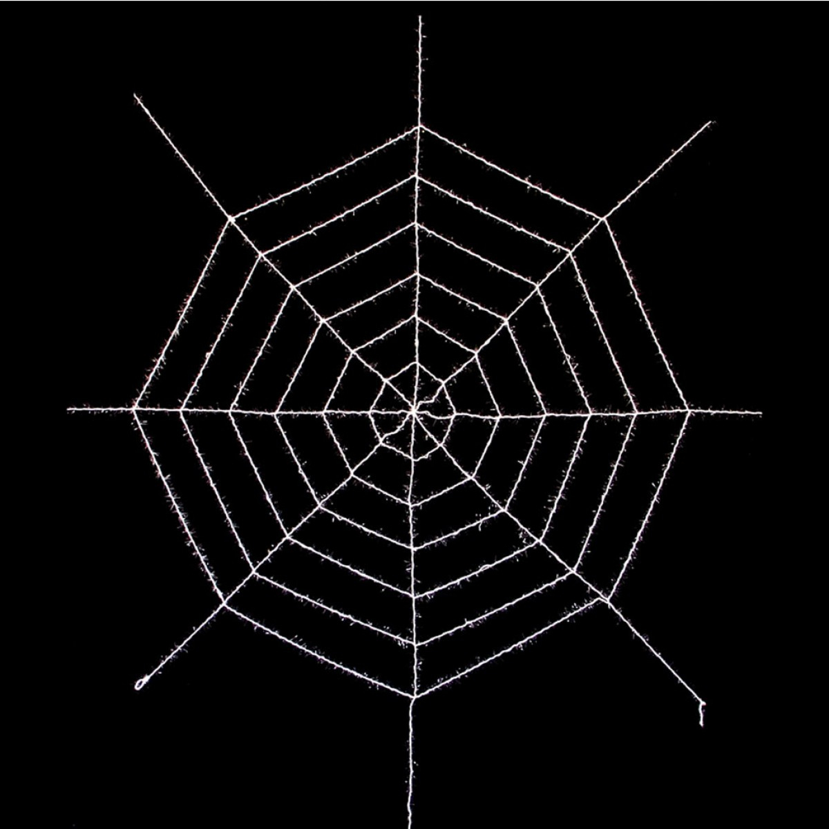 Toile D'araignée Géante intérieur Dessin Toile Araignée