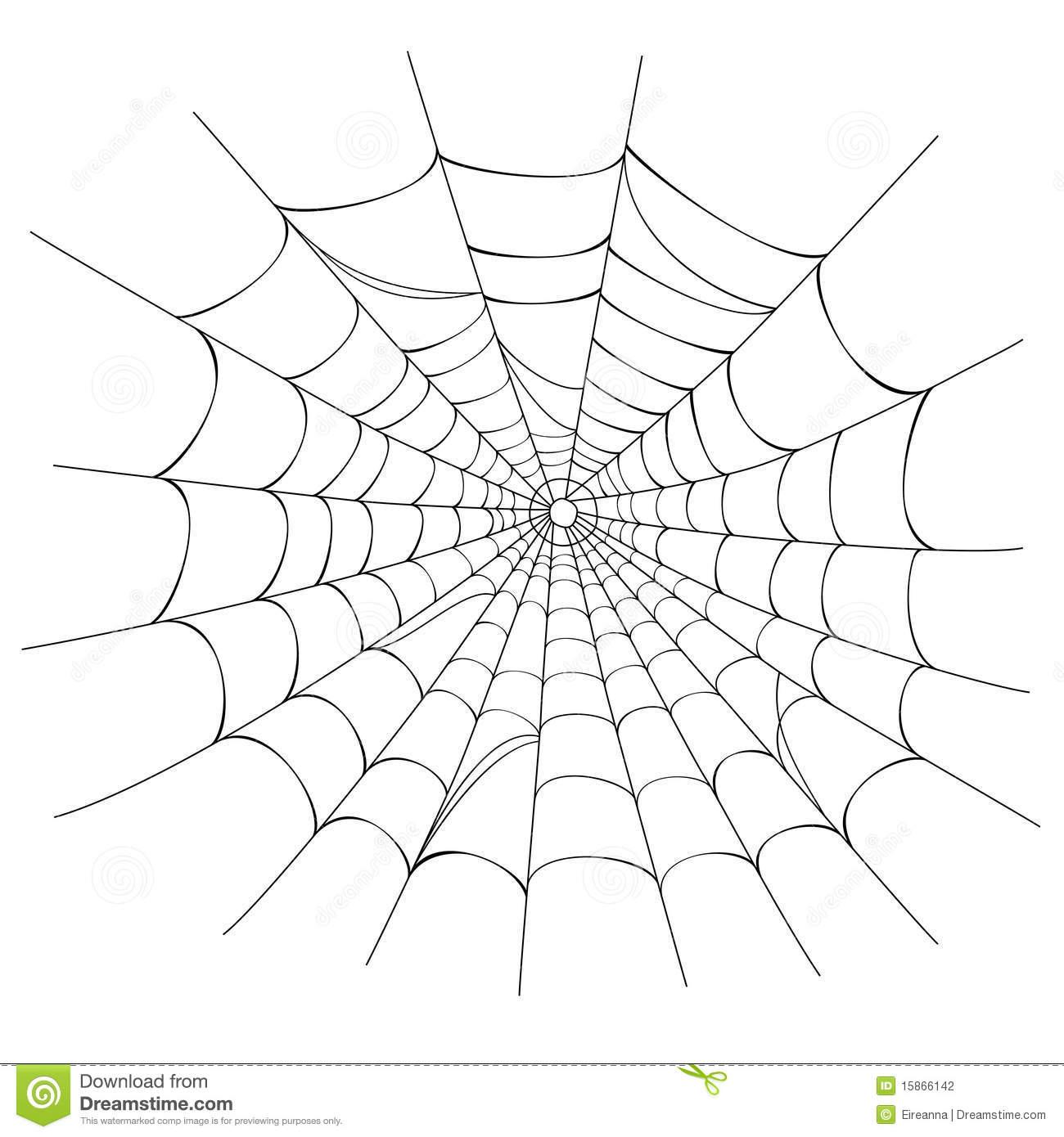 Toile D'araignée Sur Le Blanc Illustration De Vecteur intérieur Toile D Araignée Dessin
