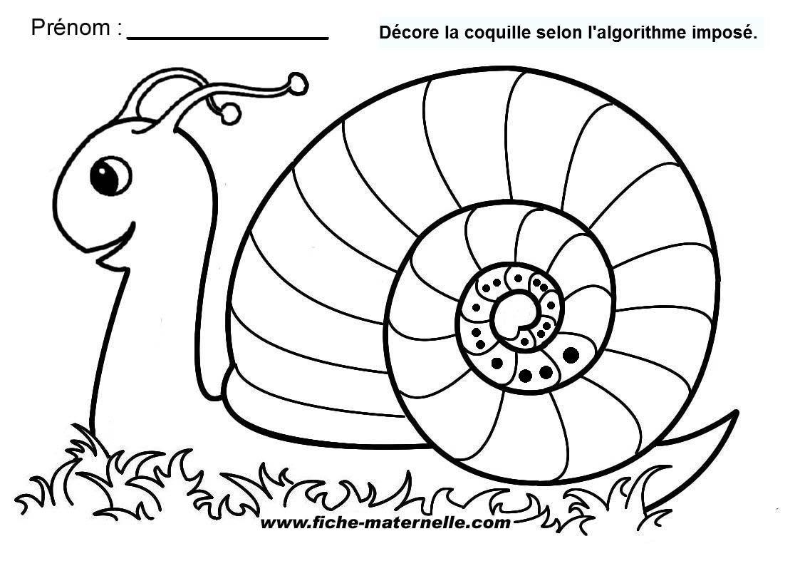 Vers Les Maths Période 4 | Coloriage Escargot, Coloriages avec Coloriage Codé Moyenne Section