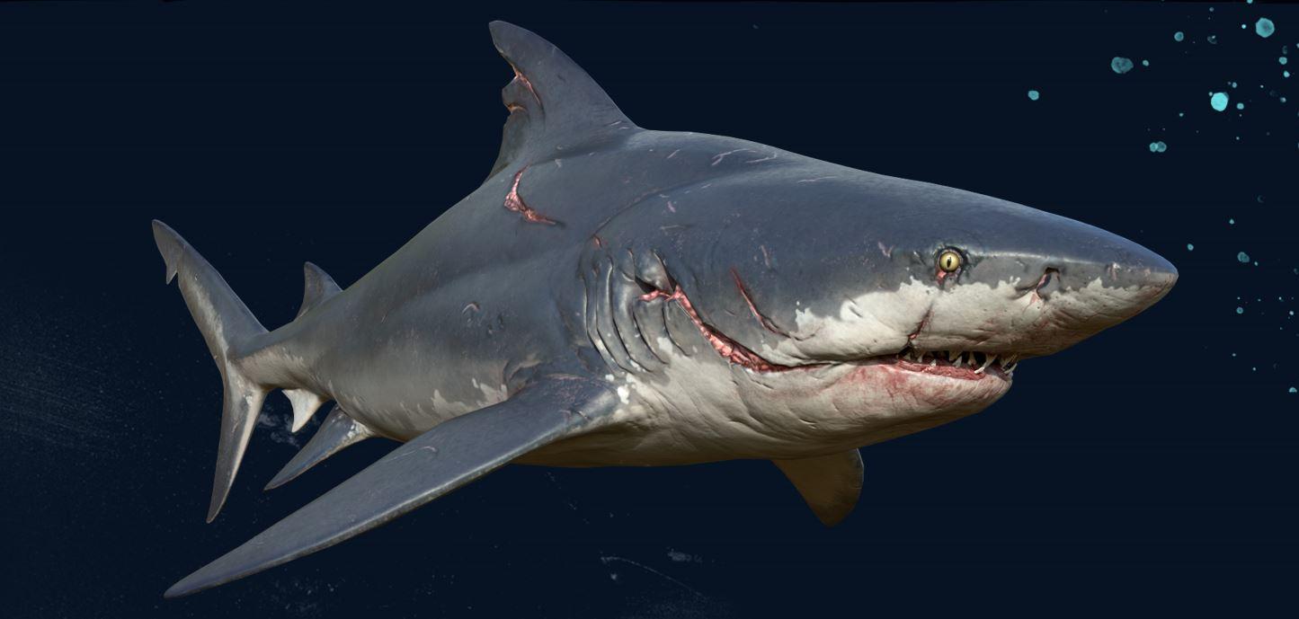 Vidéo : Le Requin De Maneater Sème Le Chaos Aux Game Awards pour Requin Jeux Video