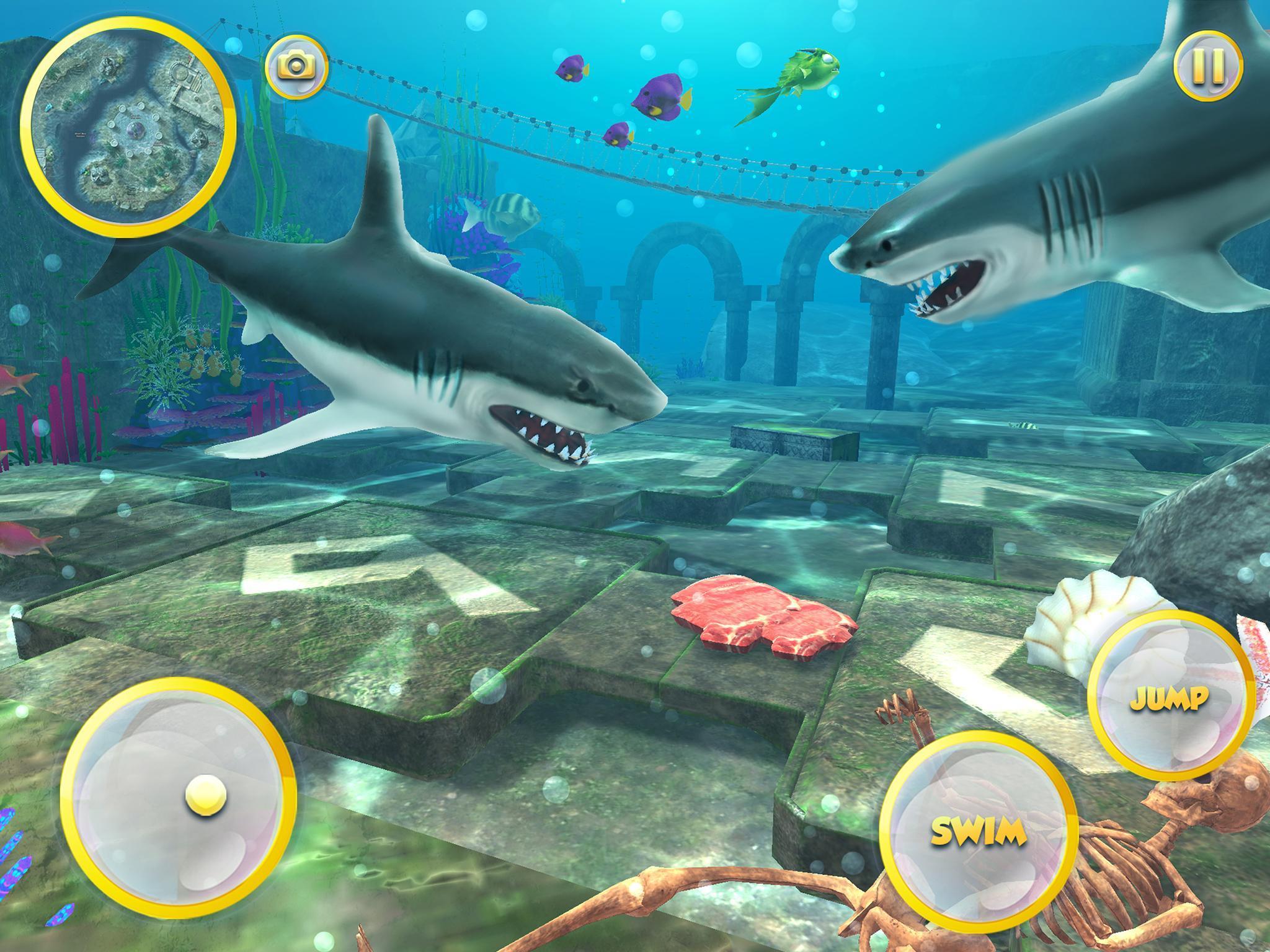 Vie Du Grand Requin Blanc: Simulation De Mégalodon Pour destiné Jeux Gratuit Requin Blanc