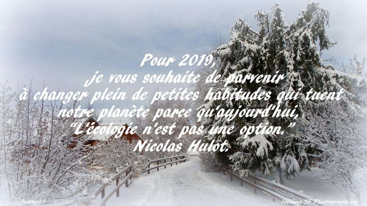 12 Cartes De Vœux De Bonne Année 2019 Gratuites Et Bonnes dedans Carte De Bonne Année Gratuite A Imprimer