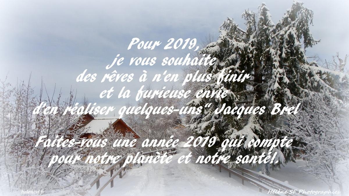 12 Cartes De Vœux De Bonne Année 2019 Gratuites Et Bonnes encequiconcerne Carte De Bonne Année Gratuite A Imprimer