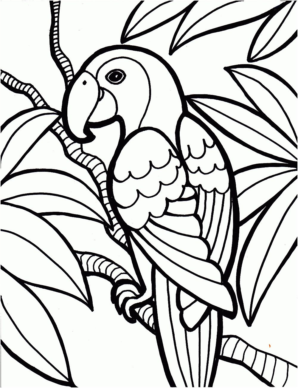 12 Cher Perroquet Coloriage Image | Coloriage, Image Coloriage serapportantà Perroquet Coloriage A Imprimer