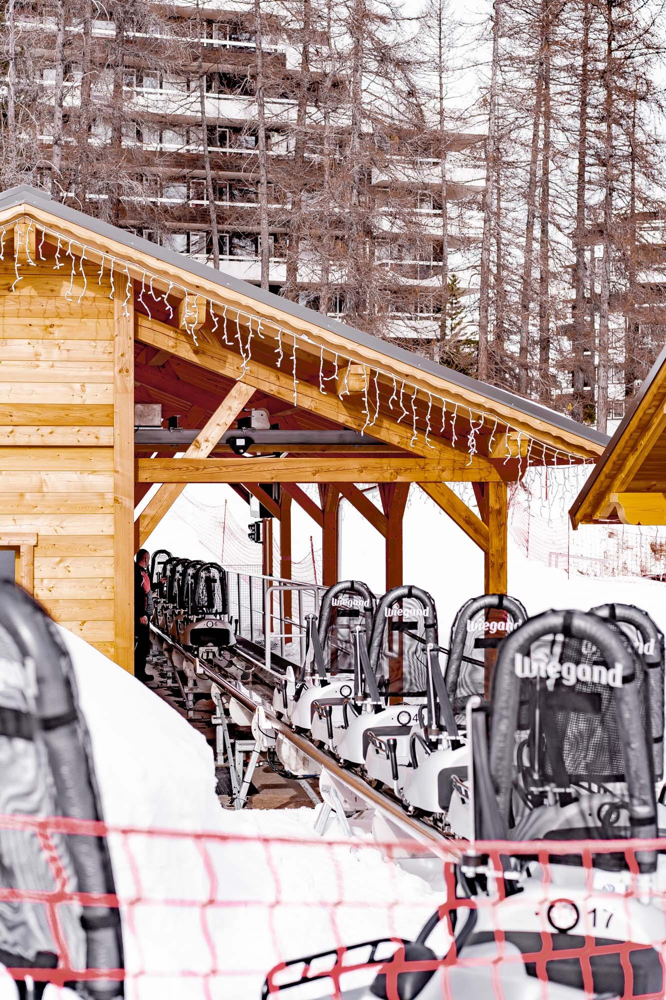 2 Jours À Vars : Chien De Traîneau Et Luge Sur Rail Dans La dedans Chien Qui Fait De La Luge