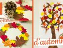 3 Activités Manuelles D'automne En Partenariat Avec Familysphere encequiconcerne Activité Manuelle Enfant 3 Ans
