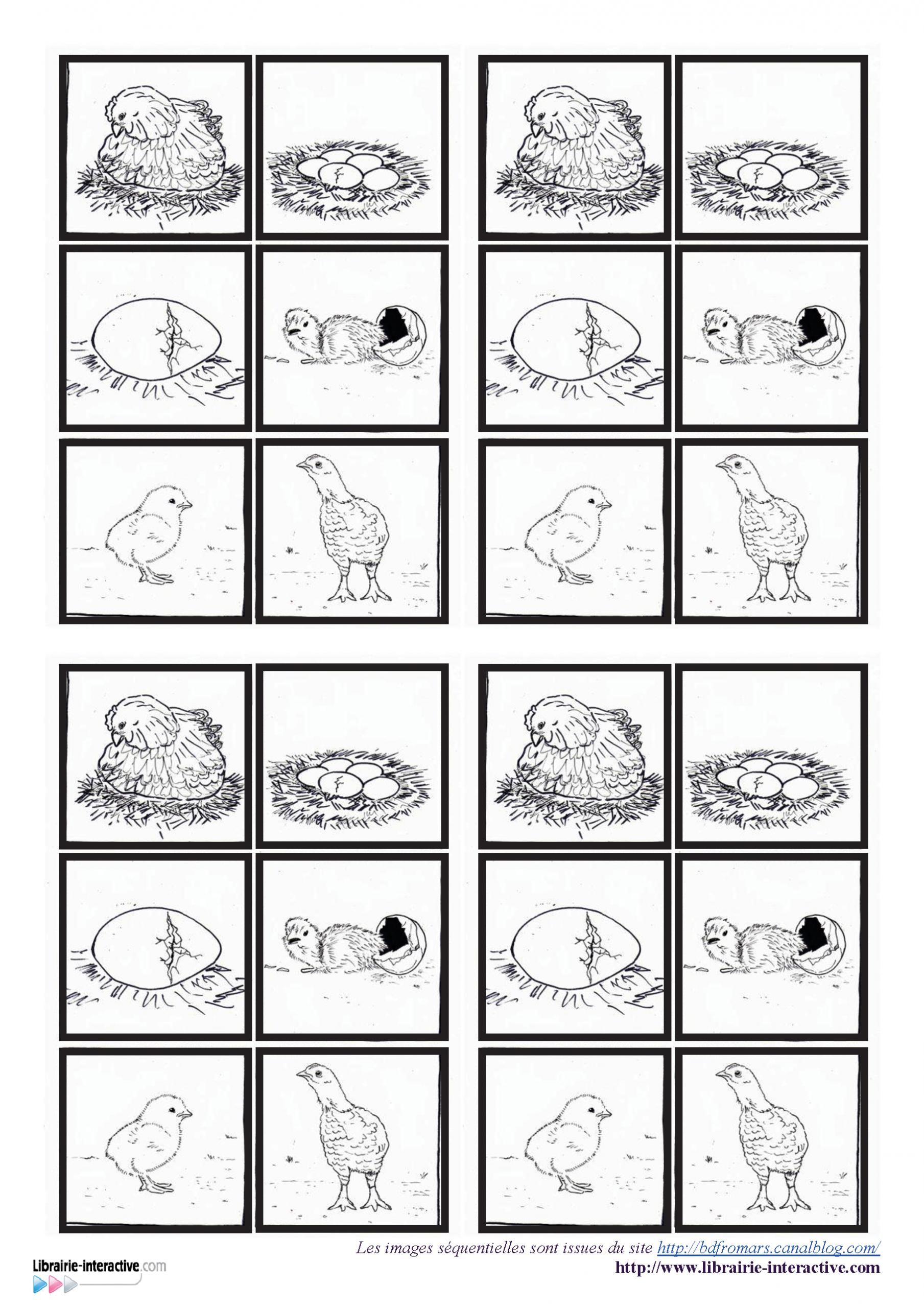 4 Fiches Avec Des Images Séquentielles Pour Décrire La avec Images Séquentielles À Imprimer