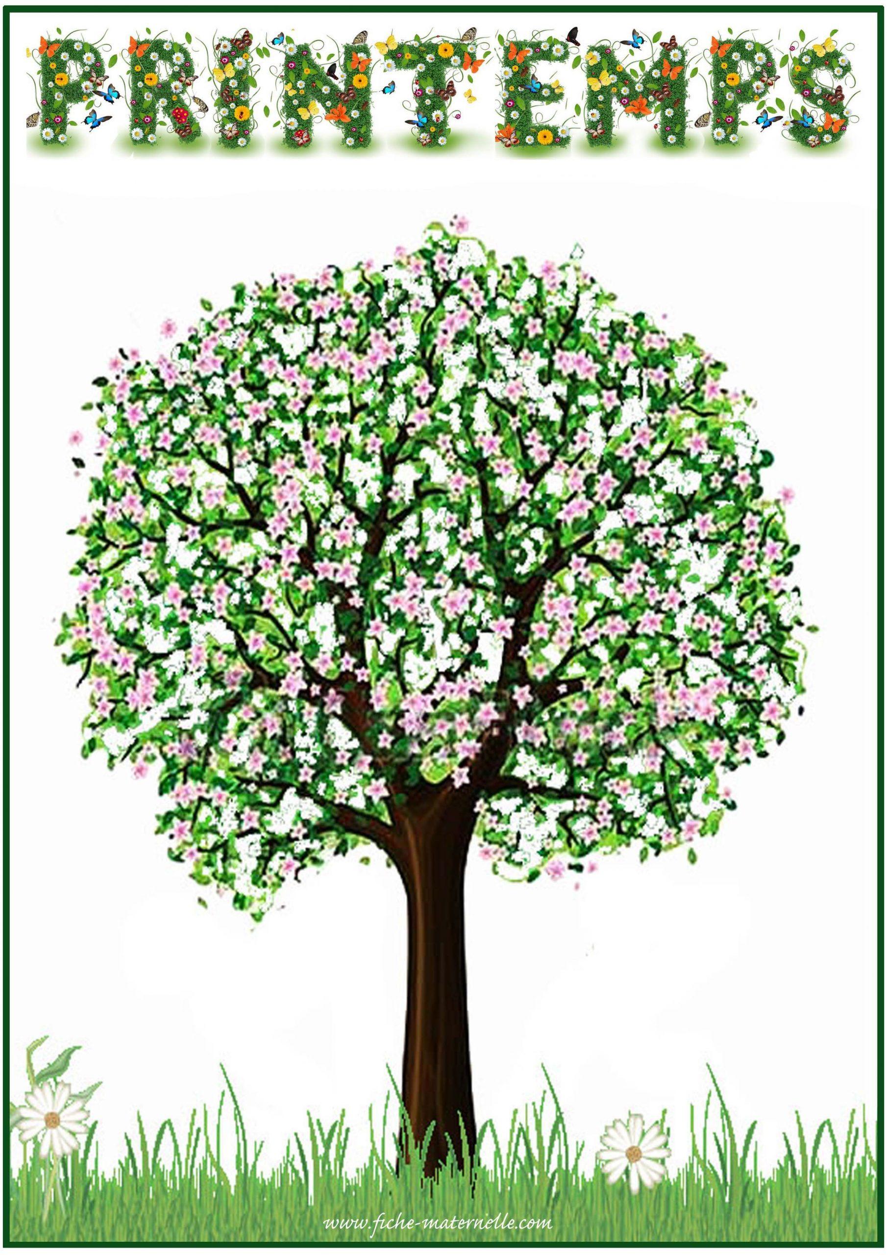 Affichage Des Saisons En Maternelle | Saisons Maternelles destiné Apprendre Les Saisons En Maternelle