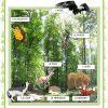 Affiches - Animaux De La Forêt - Français Fle Fiches avec Animaux Foret Maternelle