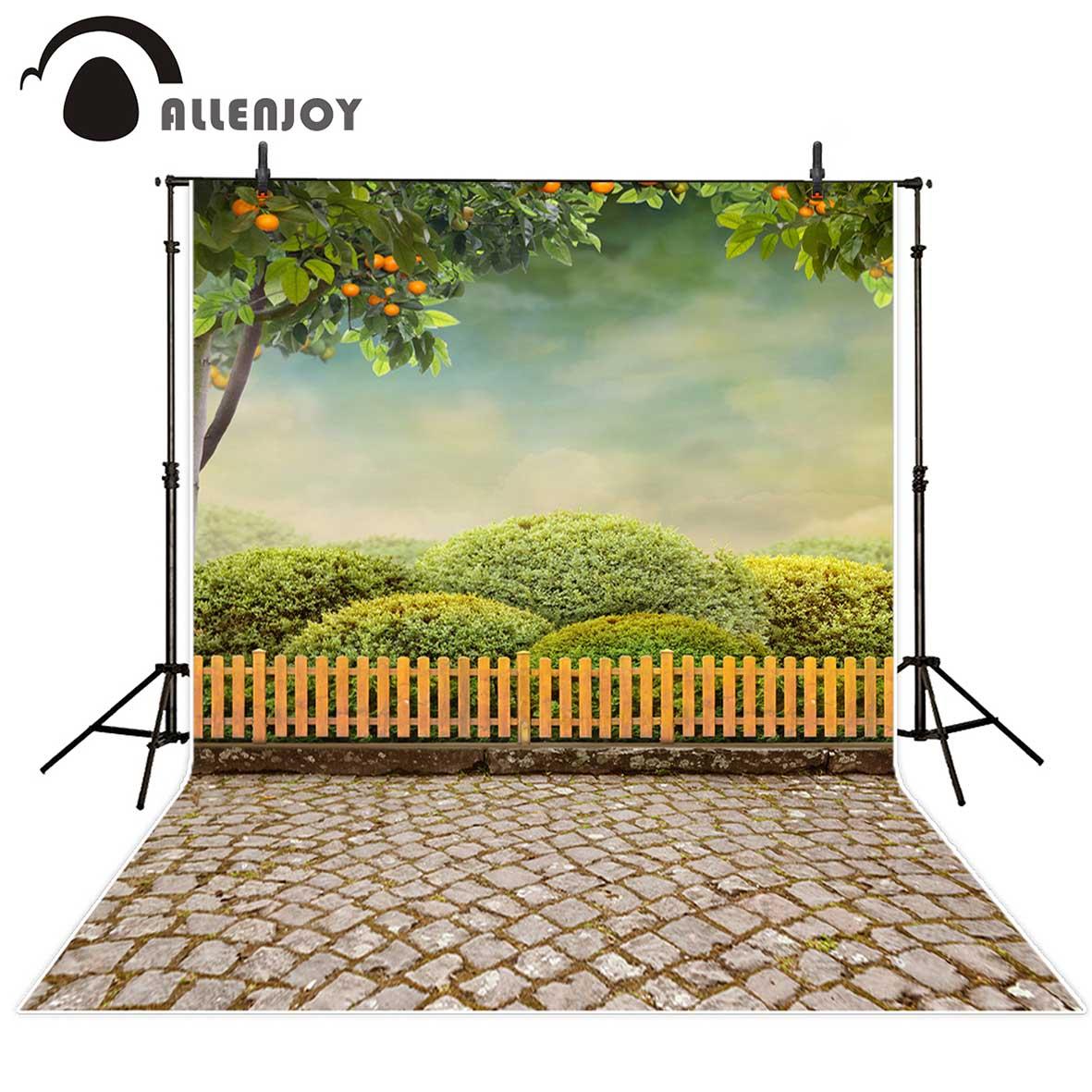 Allenjoy Photographie Enfants Fond Oranger Arbre Arbuste intérieur Brique Pour Bebe
