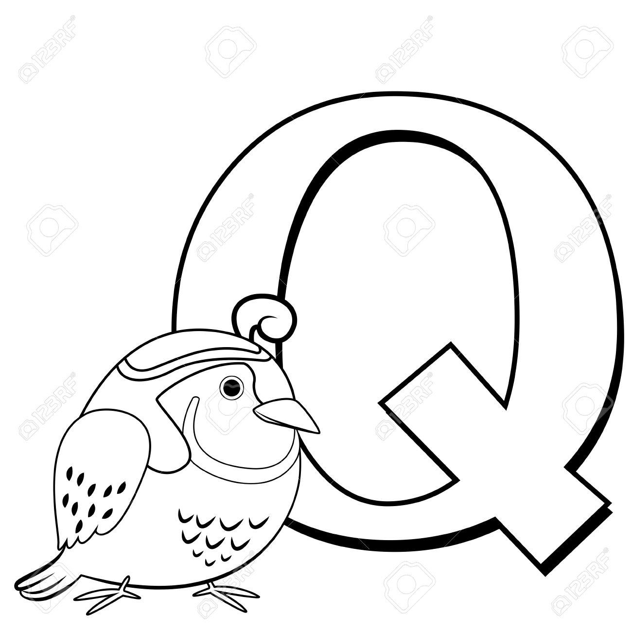 Alphabet À Colorier Pour Enfants, Q Avec Caille destiné Alphabet À Colorier Maternelle