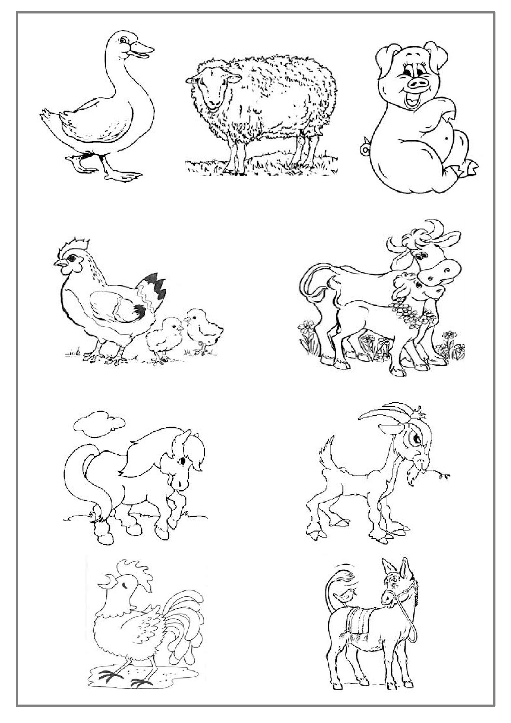 Animaux De La Ferme #31 (Animaux) – Coloriages À Imprimer destiné Animaux De La Ferme A Imprimer