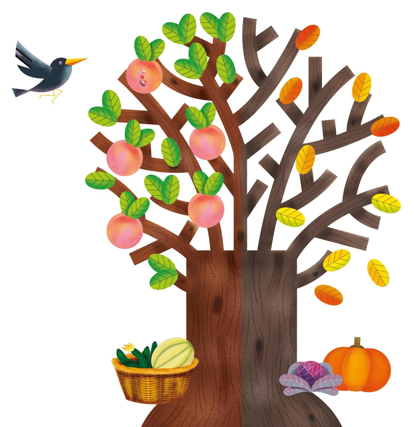 Apprendre Les Mois Et Les Saisons - Clementoni tout Apprendre Les Saisons En Maternelle