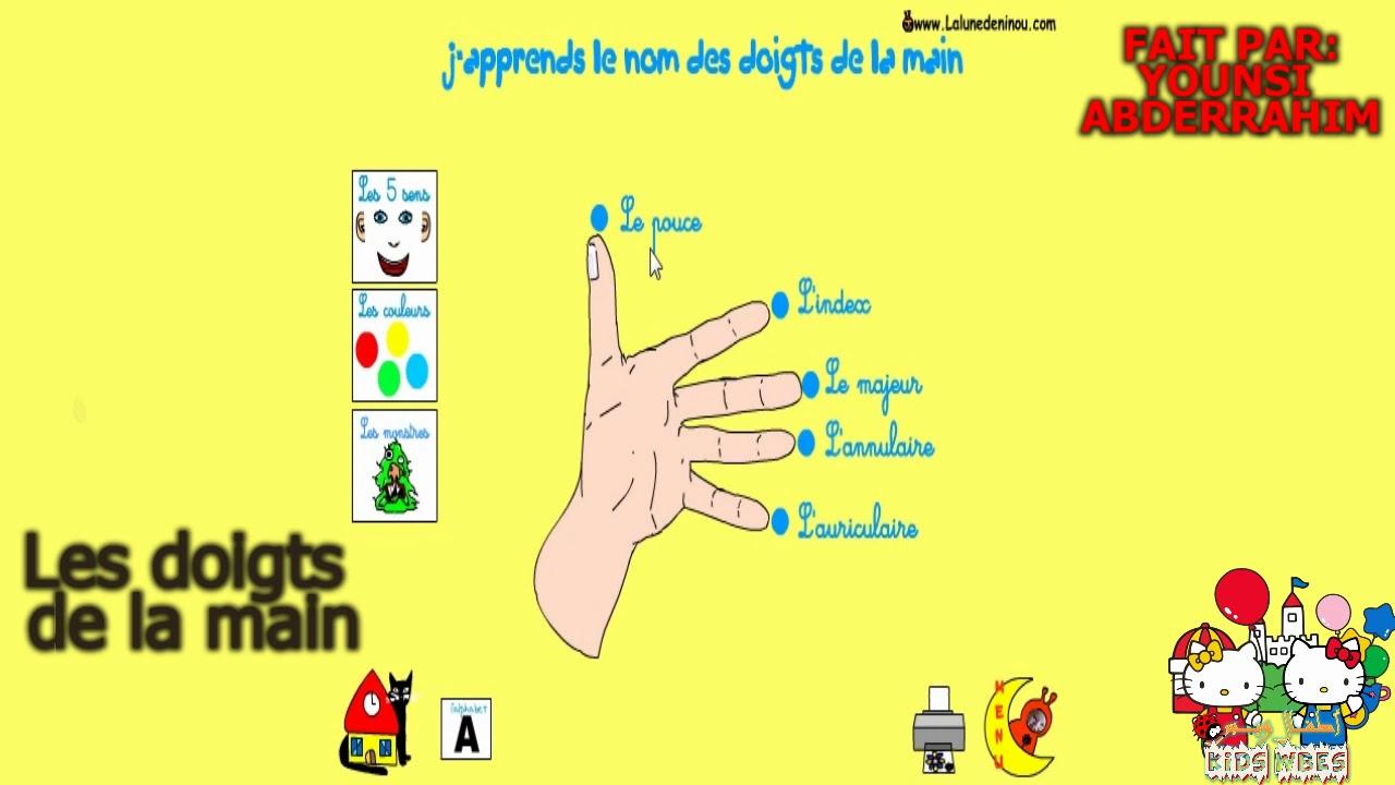 Apprendre Les Noms Des Doigts De La Main En Français à Le Nom Des Doigts De La Main
