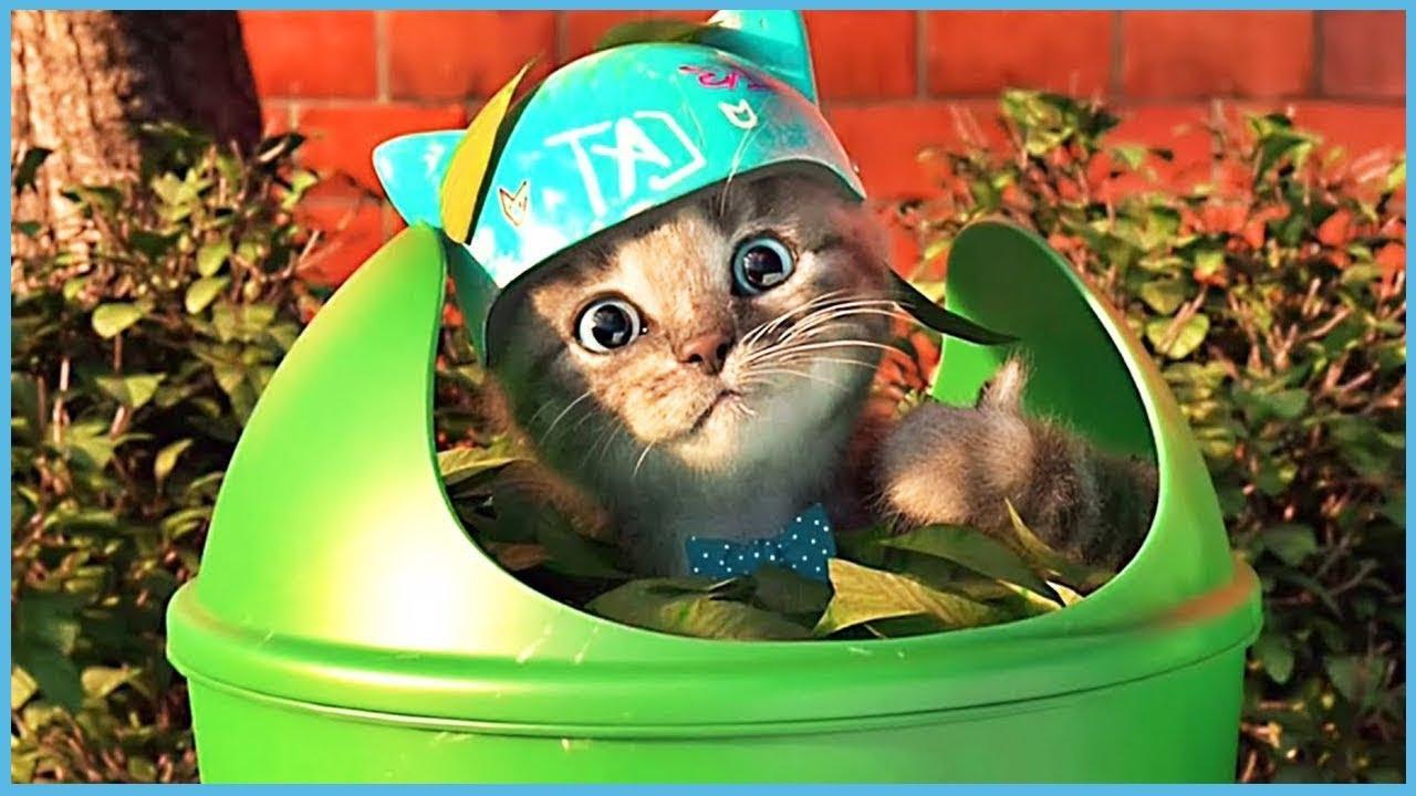 Apprenez Avec Le Chat Le Plus Mignon! Jeux De Dessin Animé Éducatif Pour  Les Enfants - Little Kitten dedans Jeux De Dessin De Chat