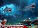 Attaque De Requin En Colère: Jeux Chasse Haute Mer Pour intérieur Requin Jeux Gratuit