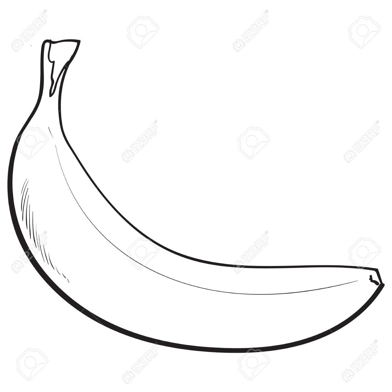 Banane Mûre Non Ouverte, Non Pelée Noir Et Blanc, Illustration De Style De  Croquis Isolé Sur Fond Blanc. Dessin Réaliste À La Main D'une Seule Banane pour Dessiner Une Banane