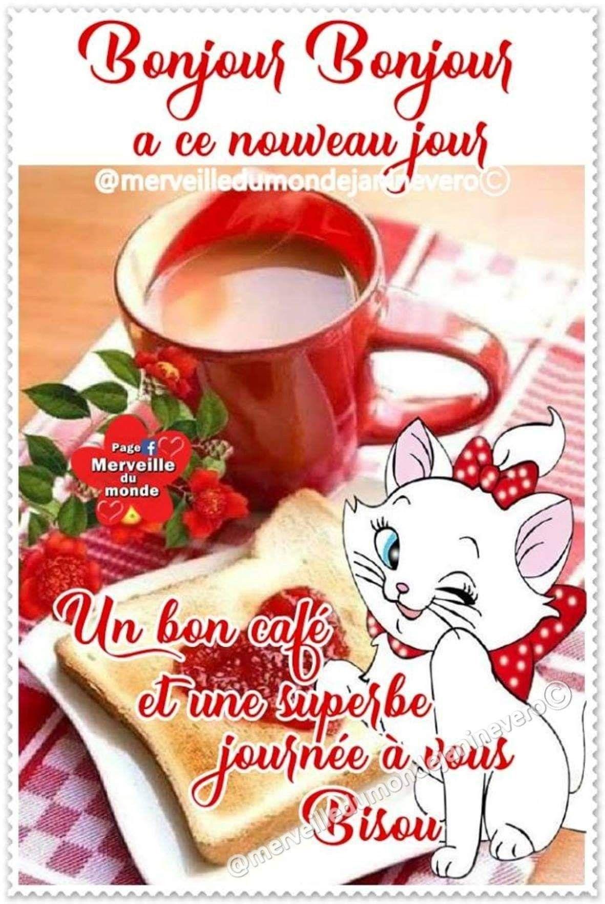 Belles Paroles Par Dieyna | Bonne Journée Humour, Bonjour Et dedans Images Bonnes Vacances Gratuites