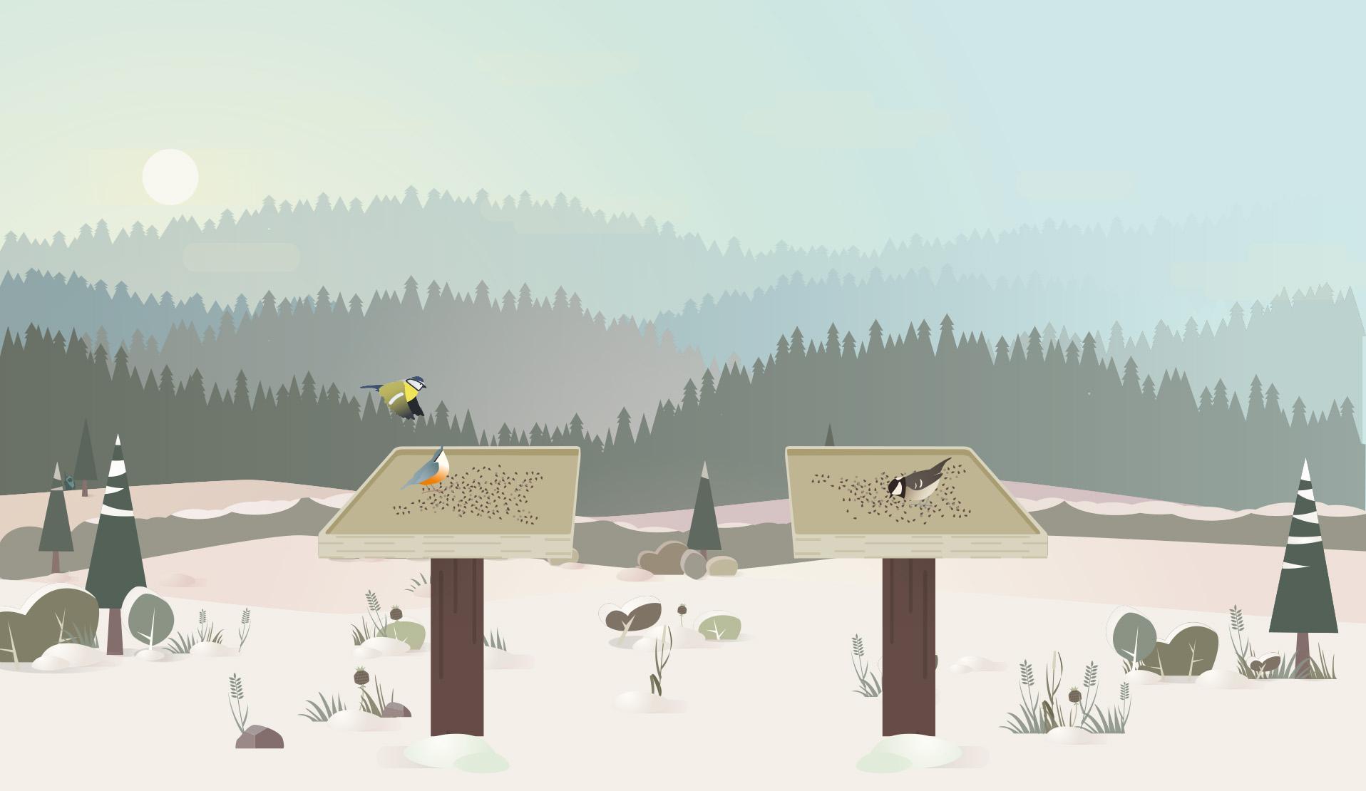 Birdlab, Un Jeu De Science Participative Autour Des Oiseaux encequiconcerne Jeux De Oiseau Gratuit