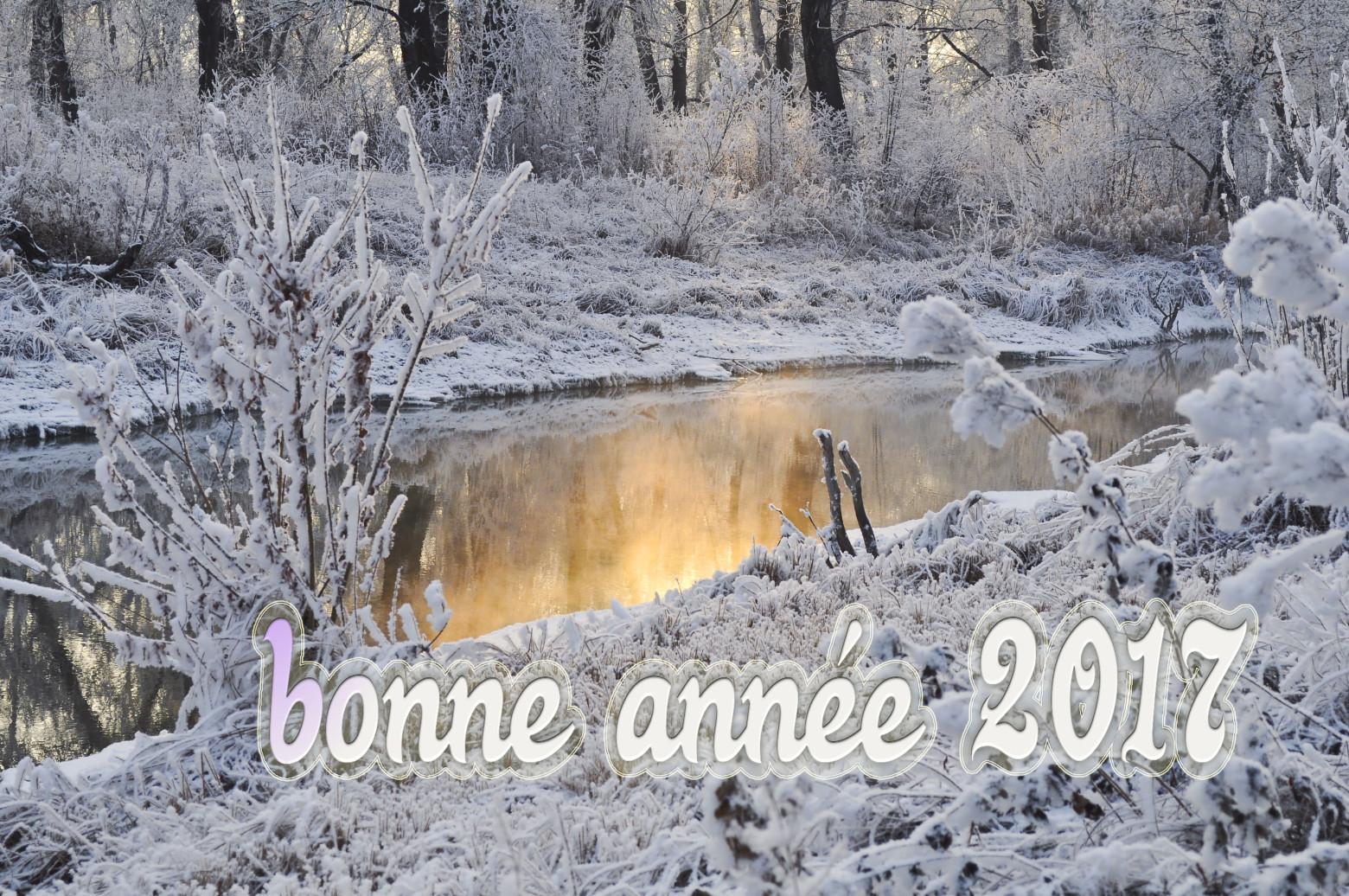 Bonne Année 2017 Cartes De Voeux Gratuites | Images destiné Carte De Bonne Année Gratuite A Imprimer