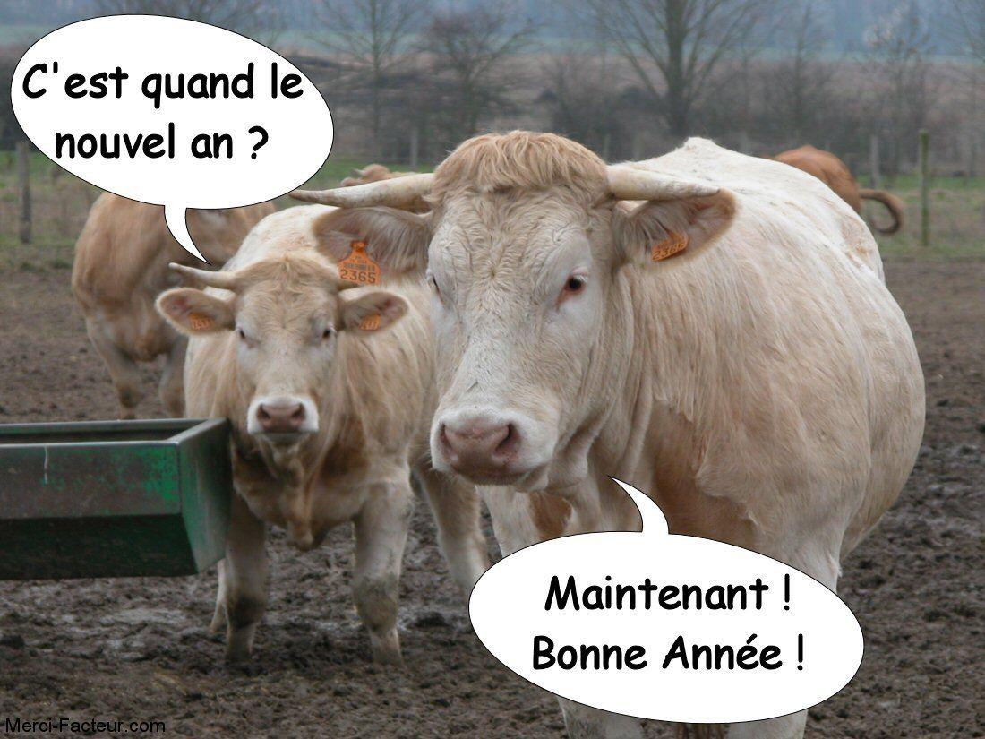 Carte De Voeux Gratuite Une Vache Qui Dit C'est Quand Le tout Carte Nouvel An Gratuite