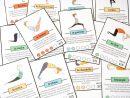 Cartes Yoga Pour Les Enfants - L' École Pour Les Parents destiné Jeux De Cartes À Télécharger Gratuitement