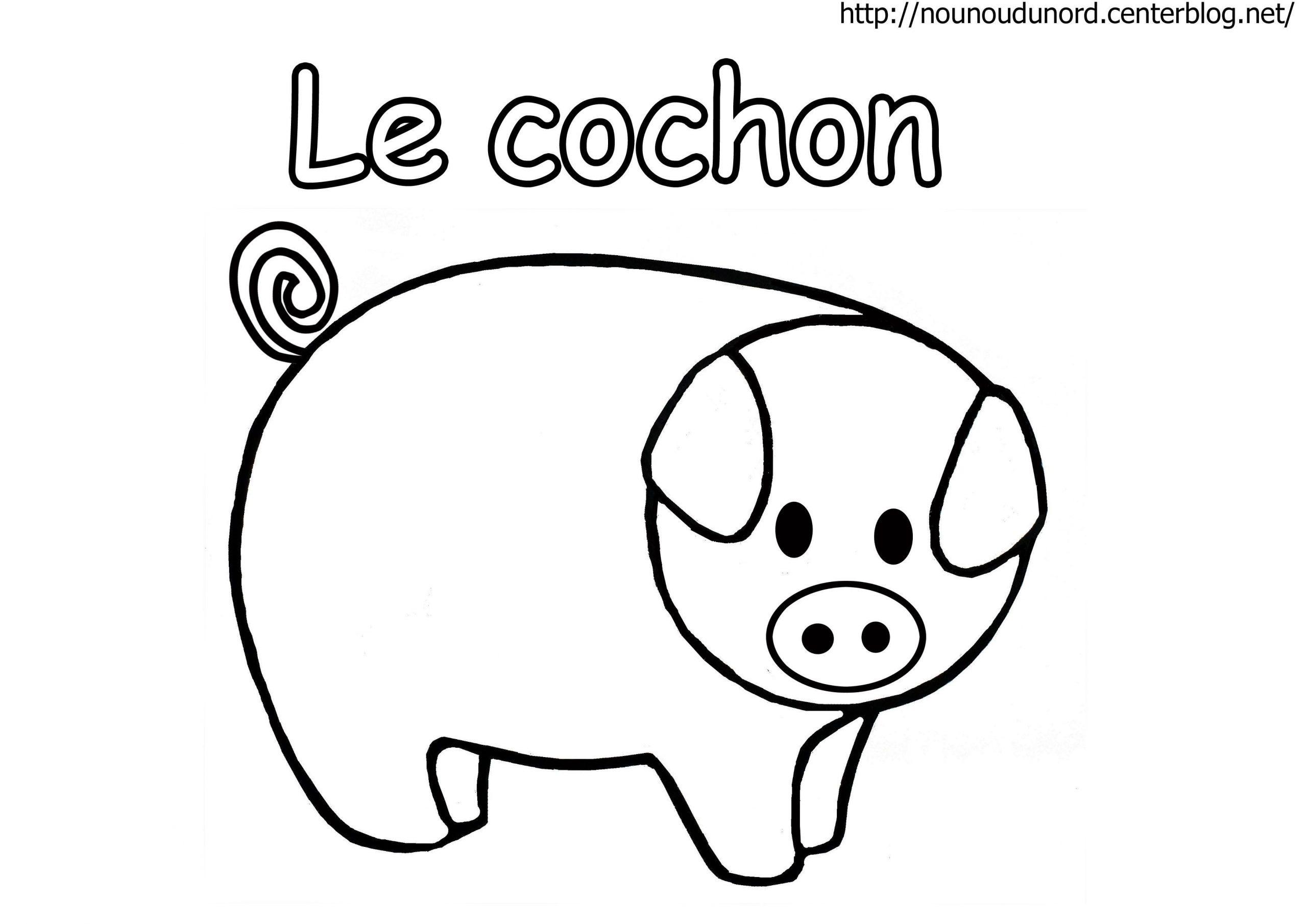 Cochon En Coloriage, À Gommettes, En Couleur avec Dessin De Cochon En Couleur
