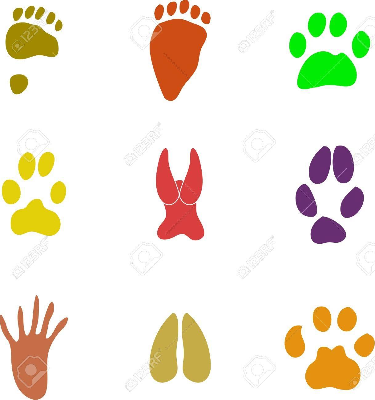 Collection De Couleurs Isolées Animal Voie Imprimer Les Icônes avec Image D Animaux A Imprimer En Couleur