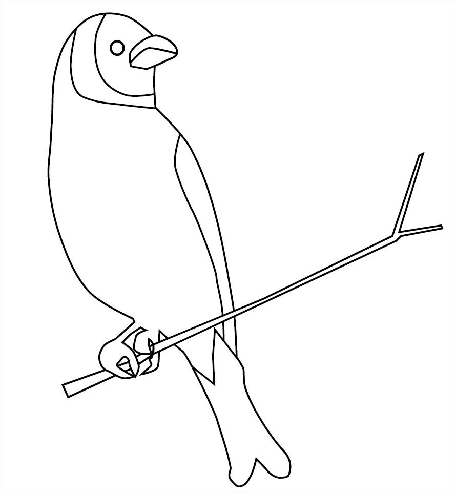 Coloriage D'un Oiseau Sur Une Branche D'arbre À Imprimer Et avec Arbre A Colorier Et A Imprimer