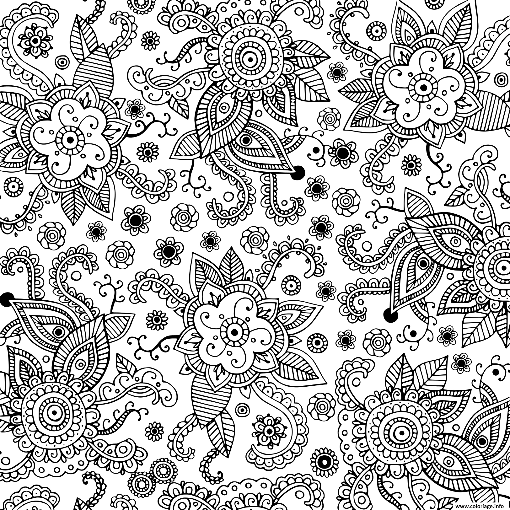 Coloriage Fleurs Nature Adultes Doodle Art Graphique Dessin dedans Coloriage Graphique