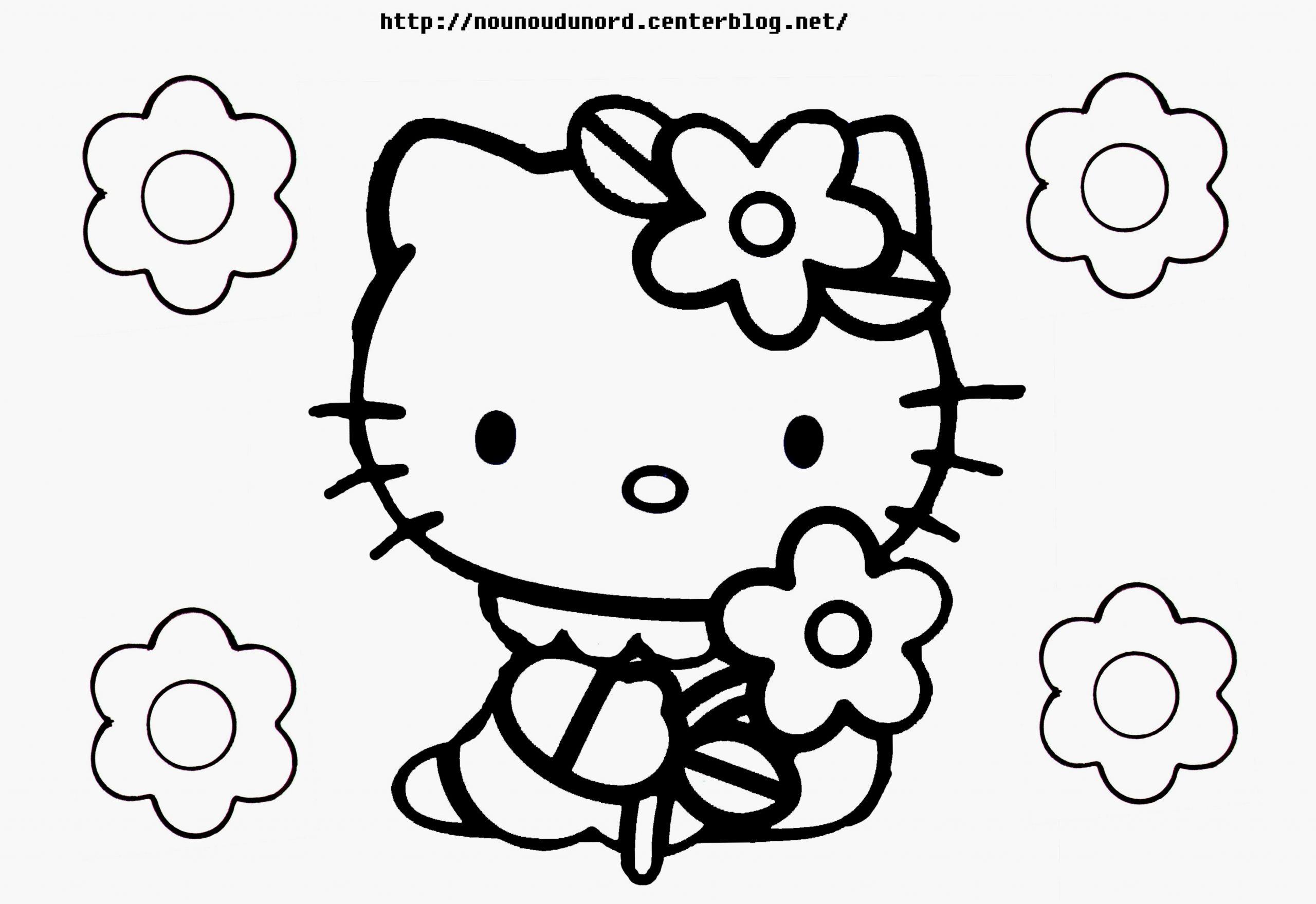 Coloriage Hello Kitty Zoo Beau Jeux De Dessin Dessin A à Jeux De Peinture Pour Fille
