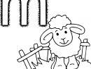 Coloriage M Comme Mouton À Imprimer concernant Mouton À Colorier