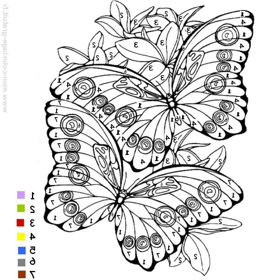 Coloriage Magique Maternelle Meilleur De Coloriage Magique à Jeux Papillon Gratuits Ligne