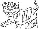 Coloriage Tigre De La Famille Panthera Tigris Dessin à Coloriage Bébé Tigre