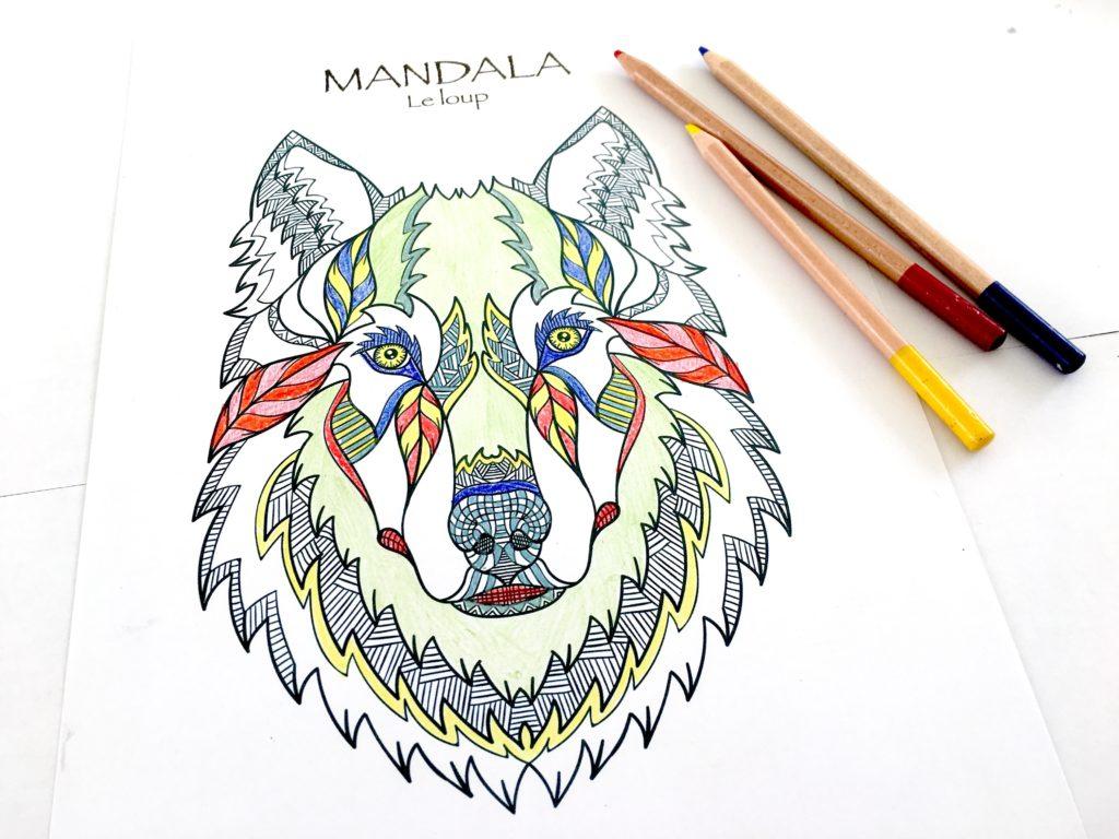 Coloriages Mandalas Animaux À Télécharger, Pour Enfants Et destiné Jeux De Bébé Animaux Gratuit