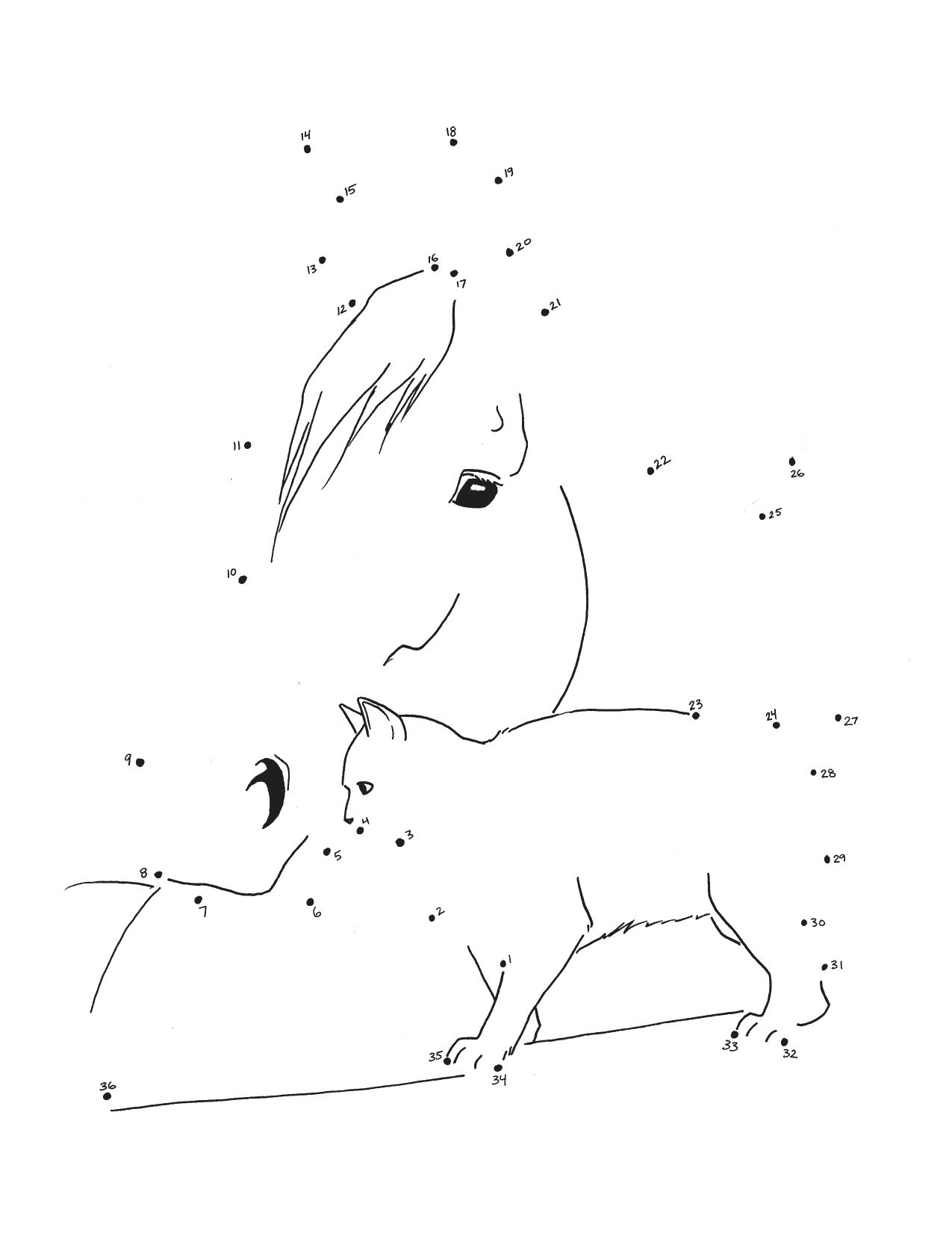 Connect The Dots   Coloriage Cheval, Dessin Chat, Jeux Coloriage à Jeux De Dessin De Chat