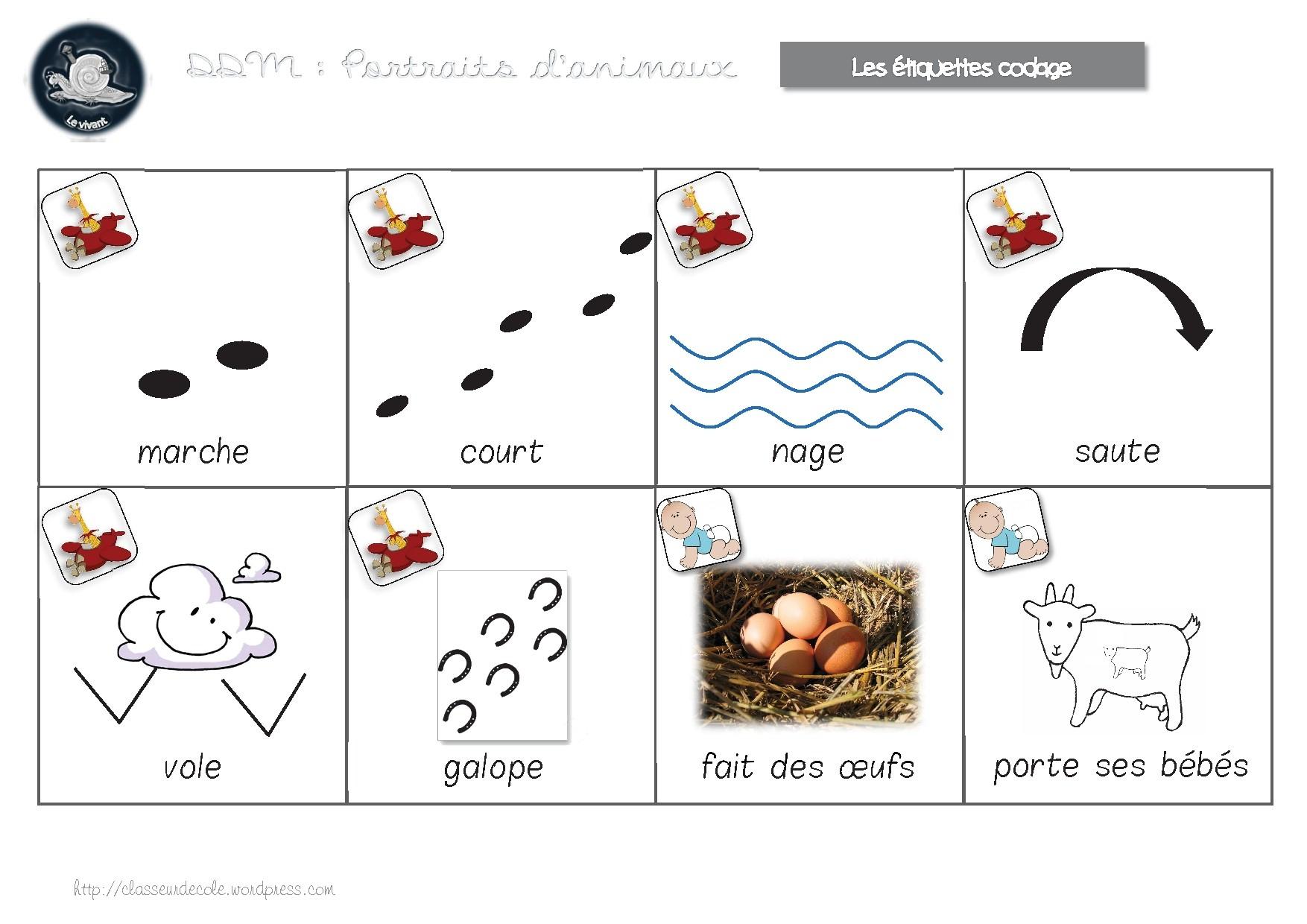 Ddm Le Vivant -Cycle 1 : Portraits D'animaux avec Animaux Maternelle Activités