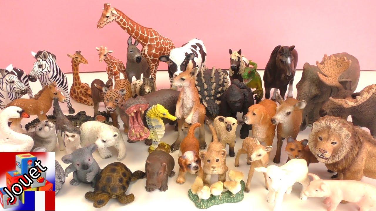 Découvrir Les Animaux Du Zoo, De La Ferme, De La Forêt Et Les Dinosaures  Review pour Jeux Animaux Enfant