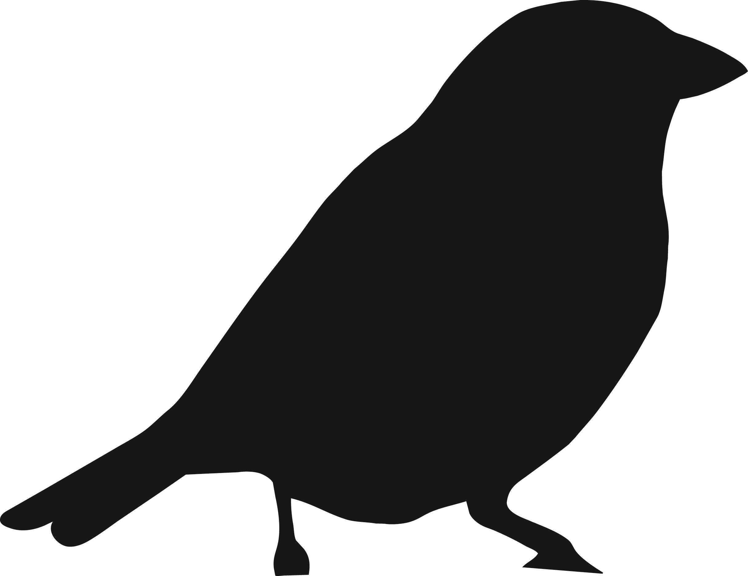 Des Pochoirs D'oiseaux Pour Habiller Mes Murs : Femme serapportantà Modèle Oiseau À Découper