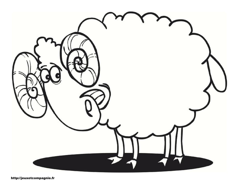 Dessin Gros Mouton pour Mouton À Colorier