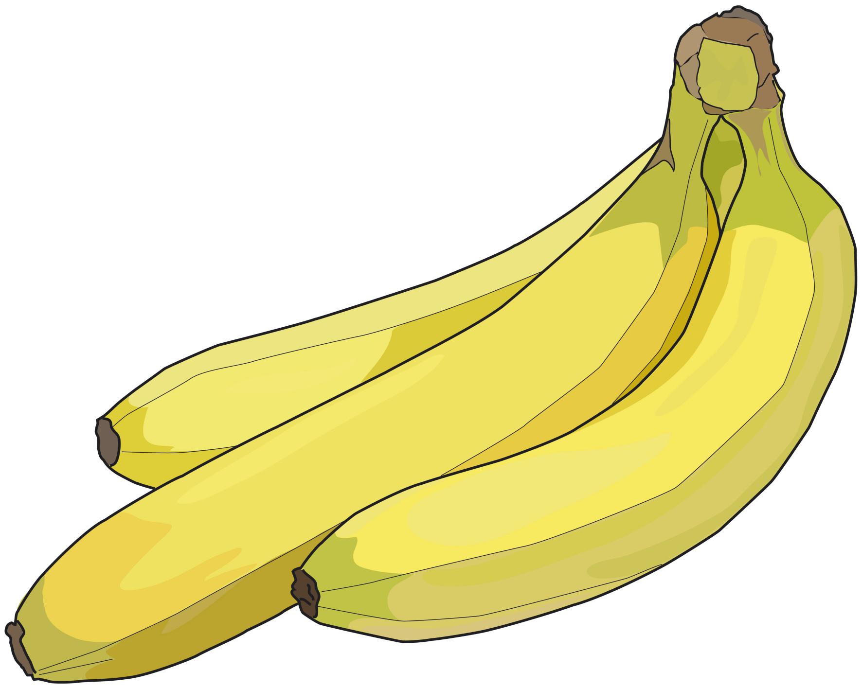 Dessins En Couleurs À Imprimer : Banane, Numéro : 22848 à Dessiner Une Banane